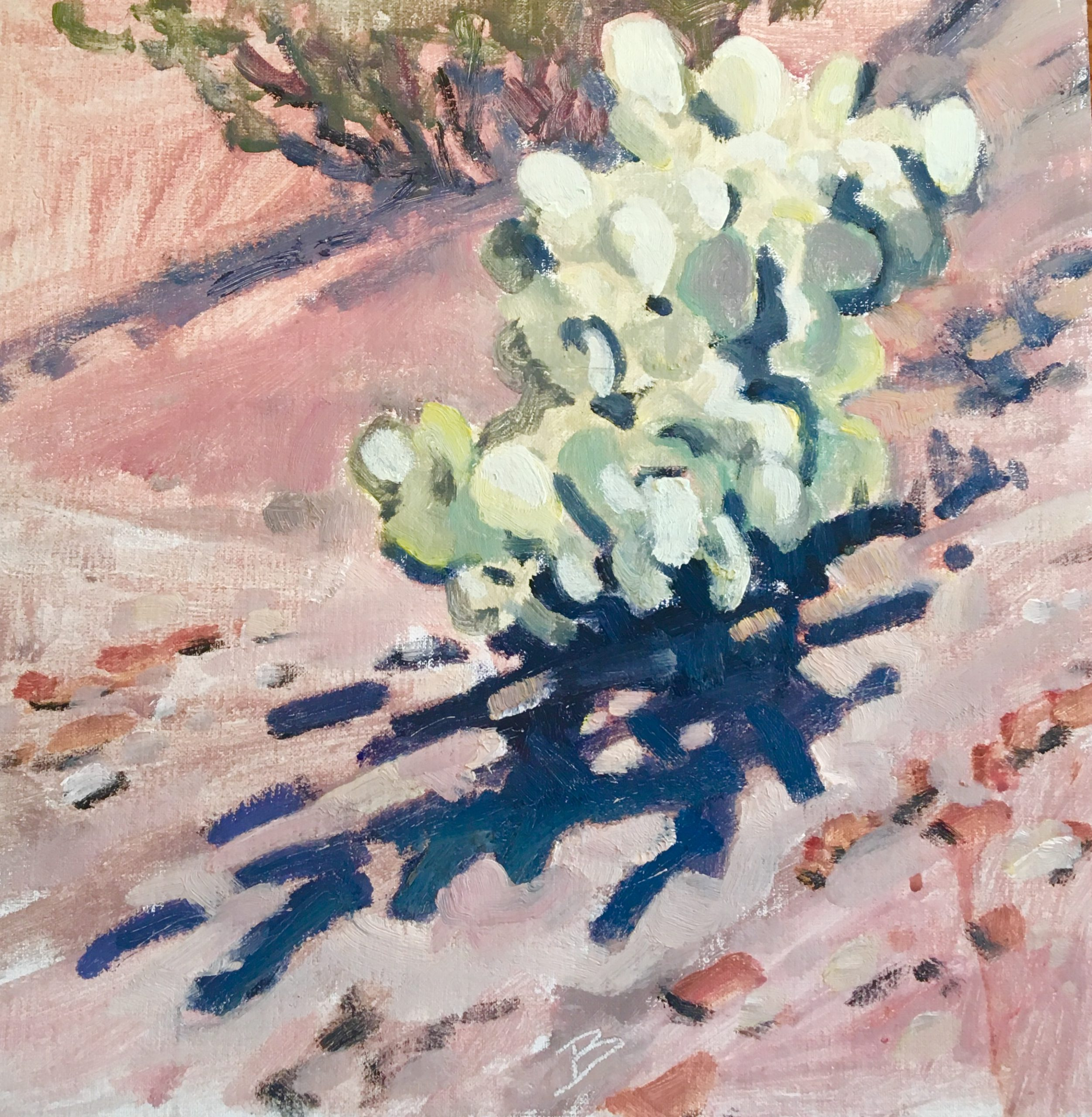 Bright Pear Bush