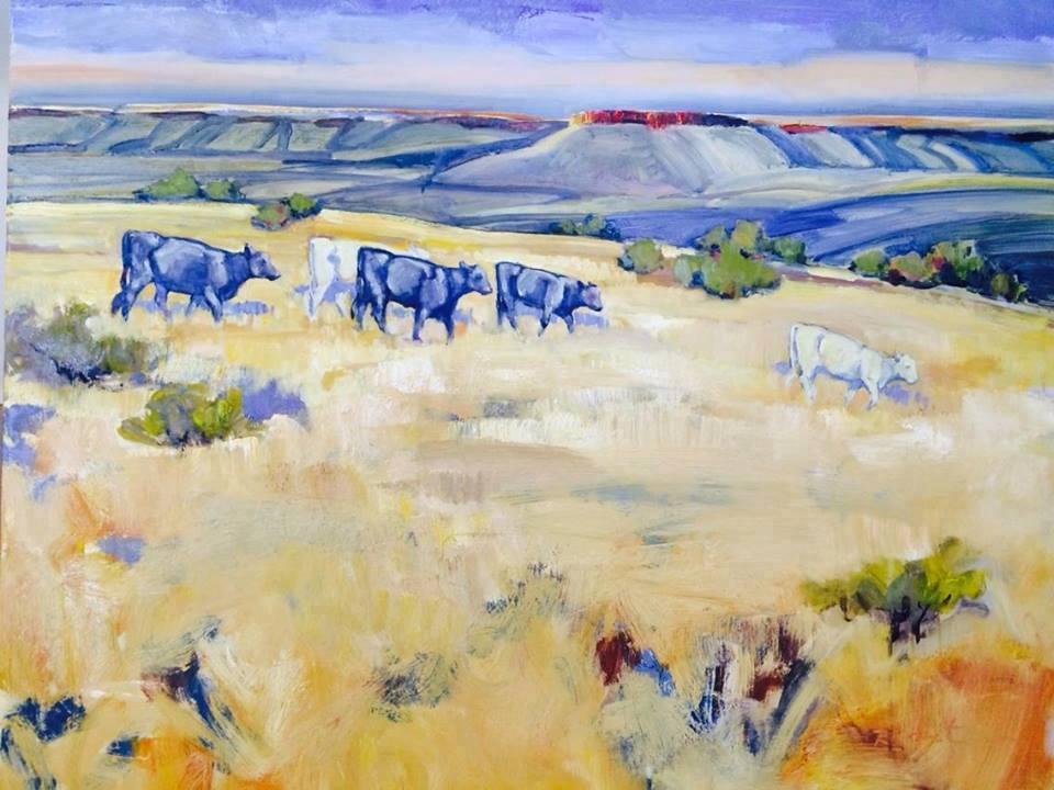 Yearlings at Mitre Peak Ranch