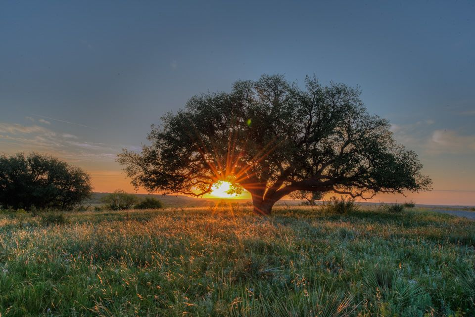 Sunrise - Fort Griffin, Texas